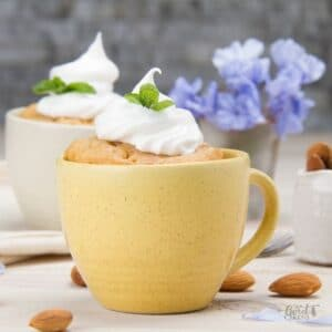 A quick and easy one minute, single serving Low-Carb Keto Vanilla Mug Cake. This is for all vanilla lovers! #keto #lowcarb #mugcake
